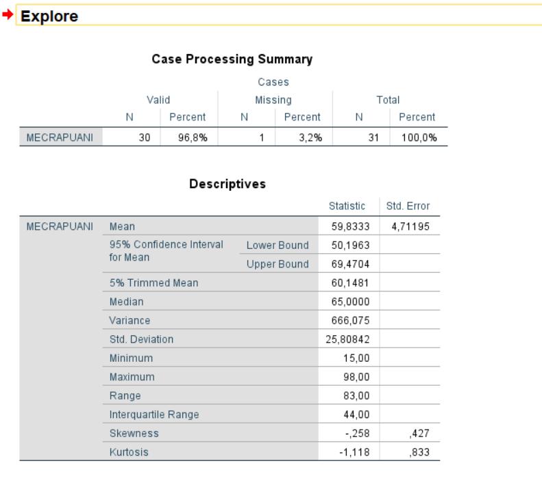 SPSS-İle-Veri-Analizi-Normal-Dağılım-Test-Sonuçları