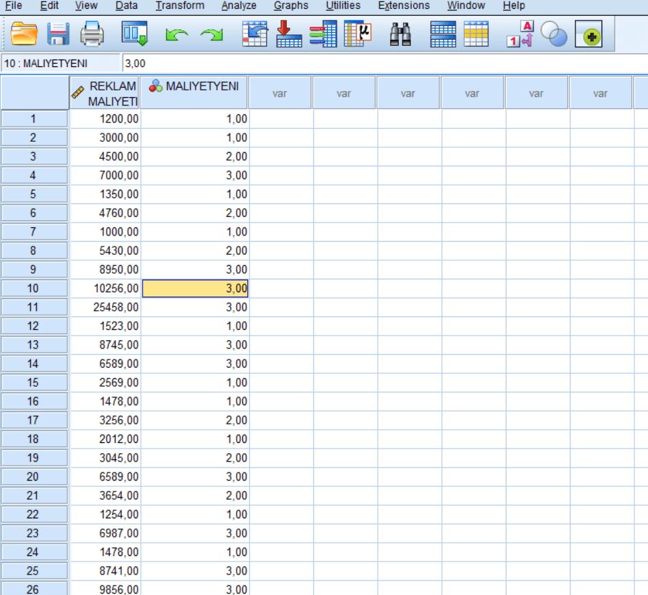 SPSS Veri Analizi - Verileri Belirli Niteliklere Ayırma- 4.Adım